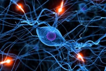 L'ossitocina aumenta la spiritualità