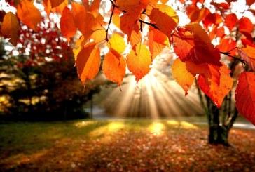 L'autunno in poesia di Rainer Maria Rilke, John Keats, Vincenzo Cardarelli