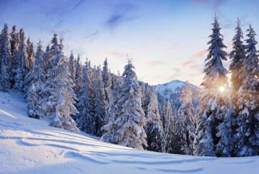 Inverno: poesie di Oscar Wilde, Ada Negri e Gianni Rodari