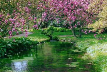 Primavera: poesie di Vincenzo Cardarelli, Ada Negri e Lev Tolstoj