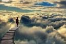 Christof Koch, la scienza e le Near Death Experiences (NDEs)